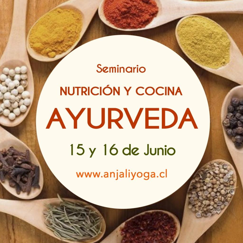 SEMINARIO_AYURVEDA_Puerto_Varas